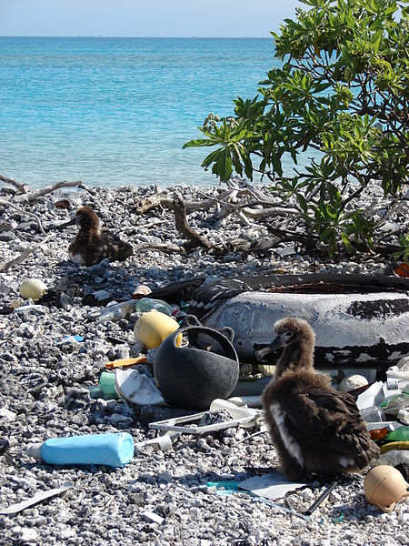 midway island 1