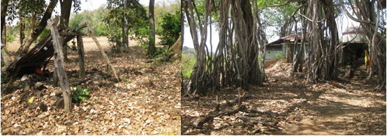 The sacred grove at Kharpatwadi and the Hatkeshwar Temple in Chasole will be submerged