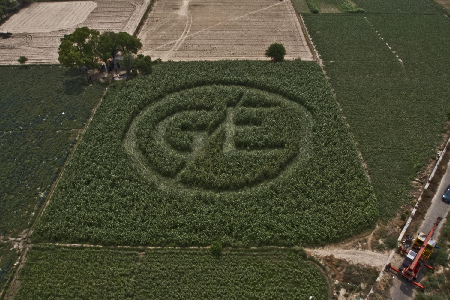 Crop Circle in Delhi