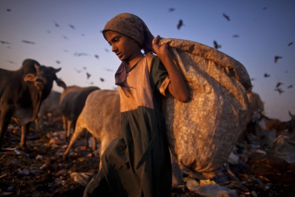 Indian Rag Pickers Forage For Recyclables At Delhi Landfill Site