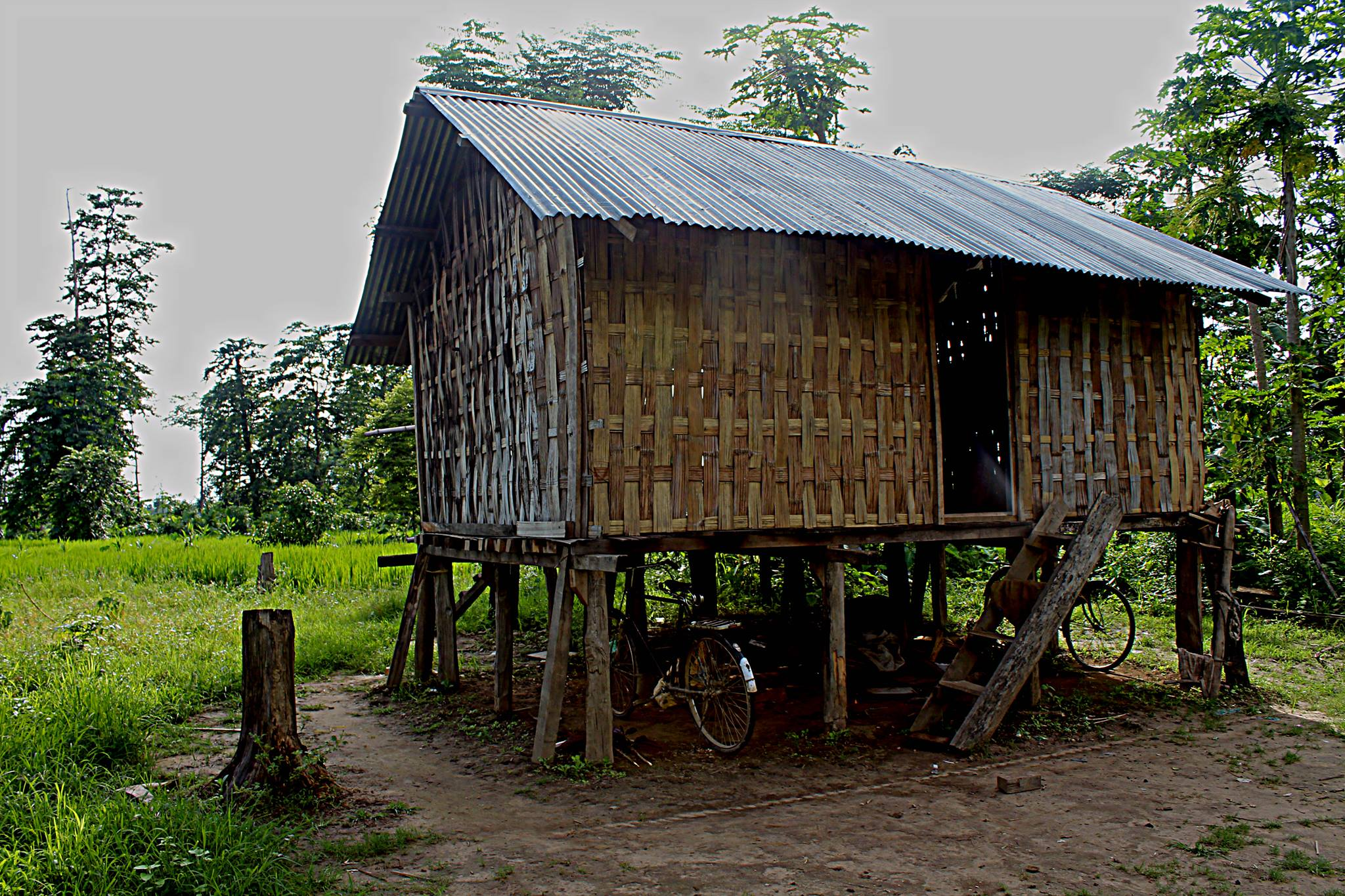 A Chakma House in Diyun, Arunachal Pradesh. Most of the houses are built from bamboo and locally available materials. Picture Courtesy: Seven Sisters Project