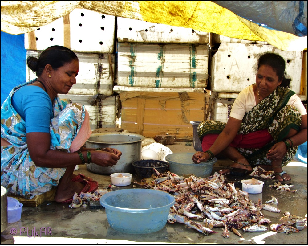 The women of the Koli household help by selling fish in the local market.