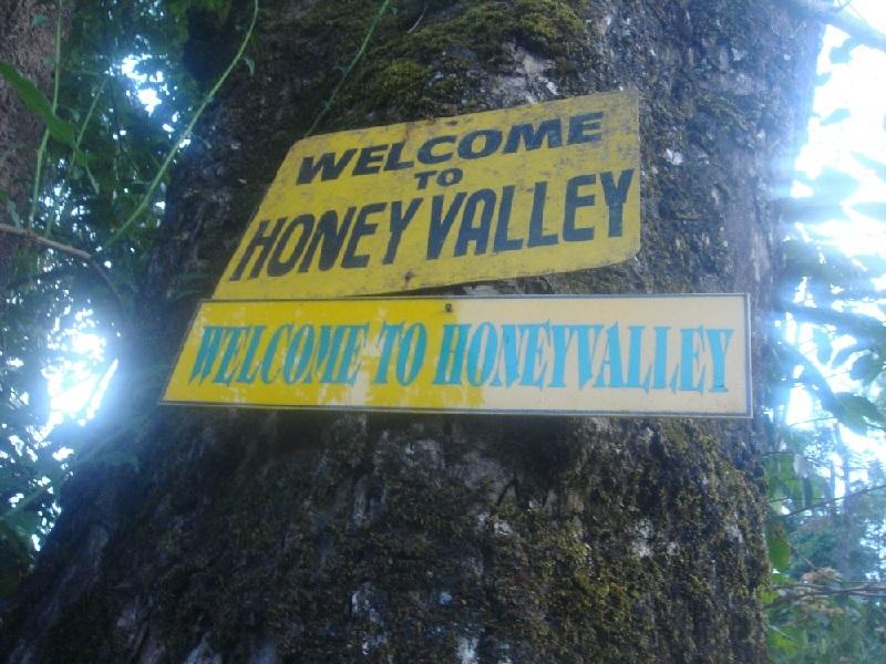 honeyvalley