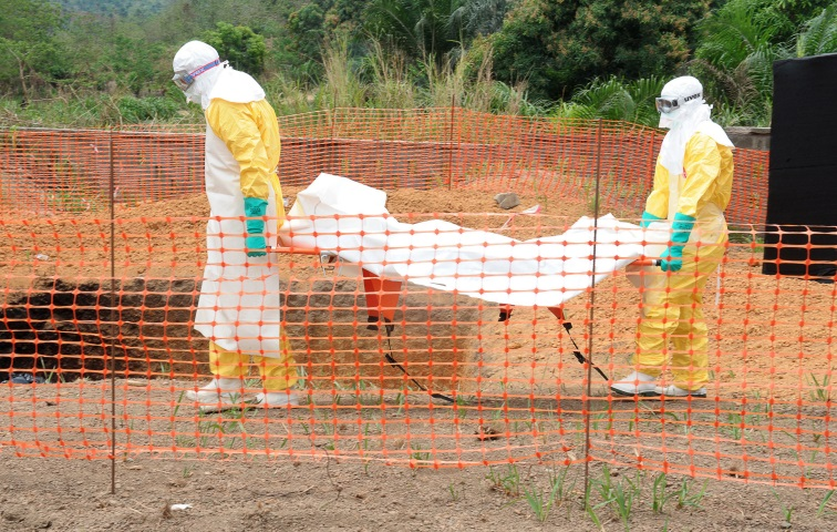 ebola virus 1