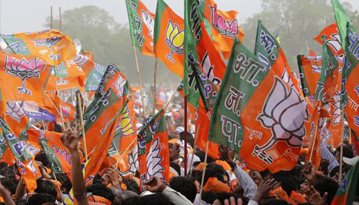 BJP assembly elections 20114