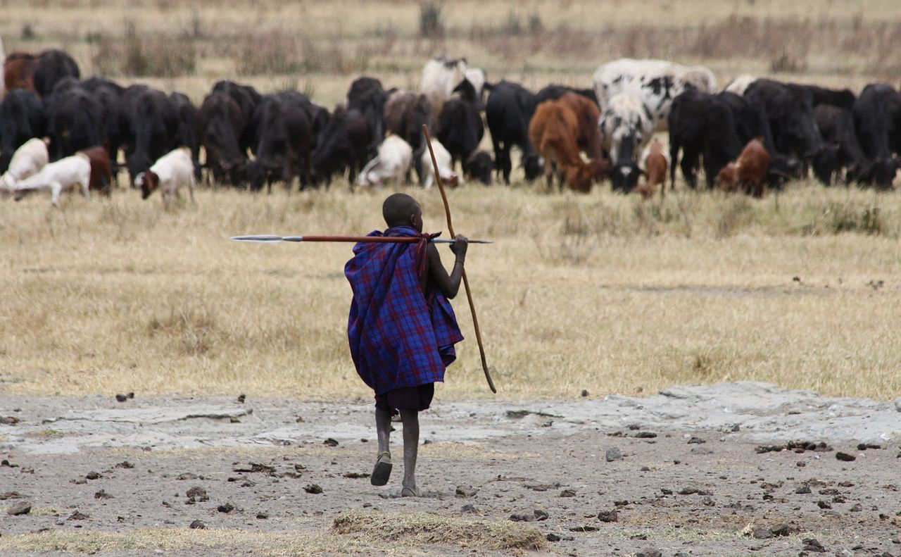 masai tribe africa