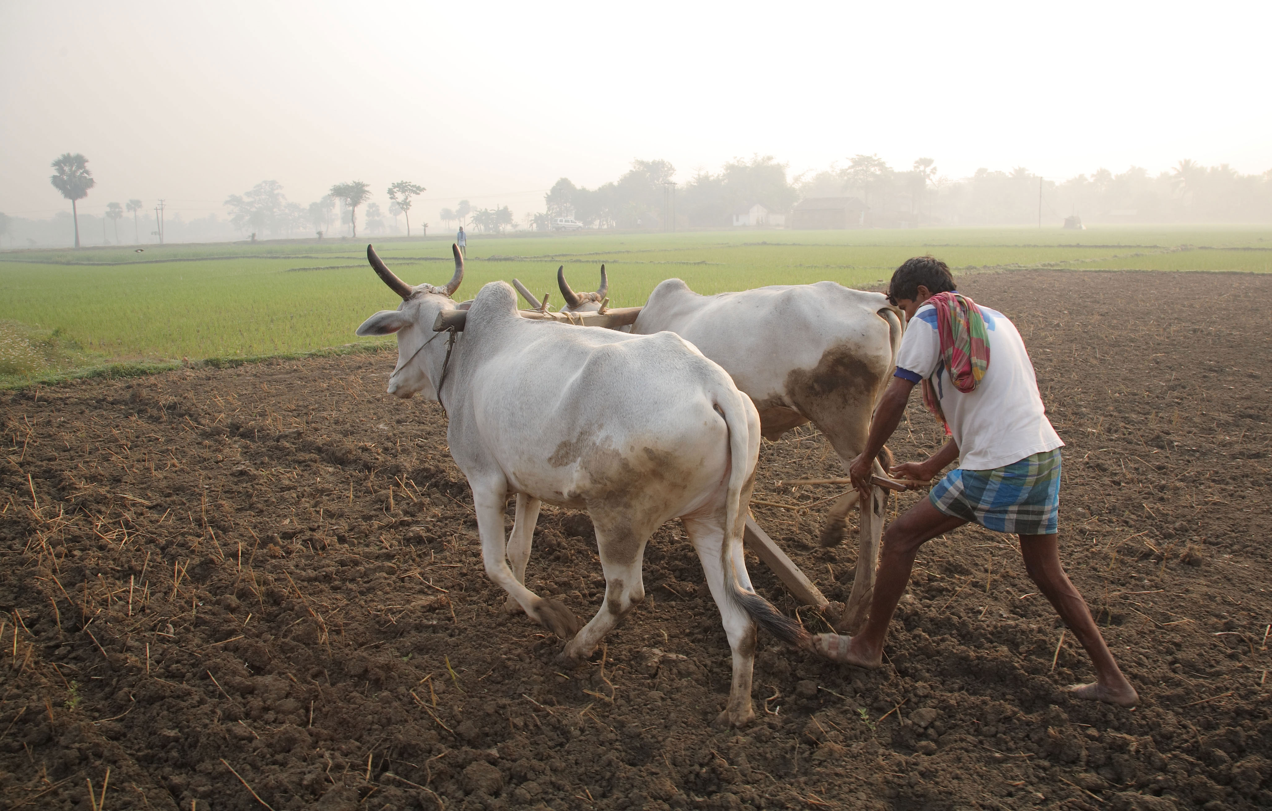 how to become a farmer in india