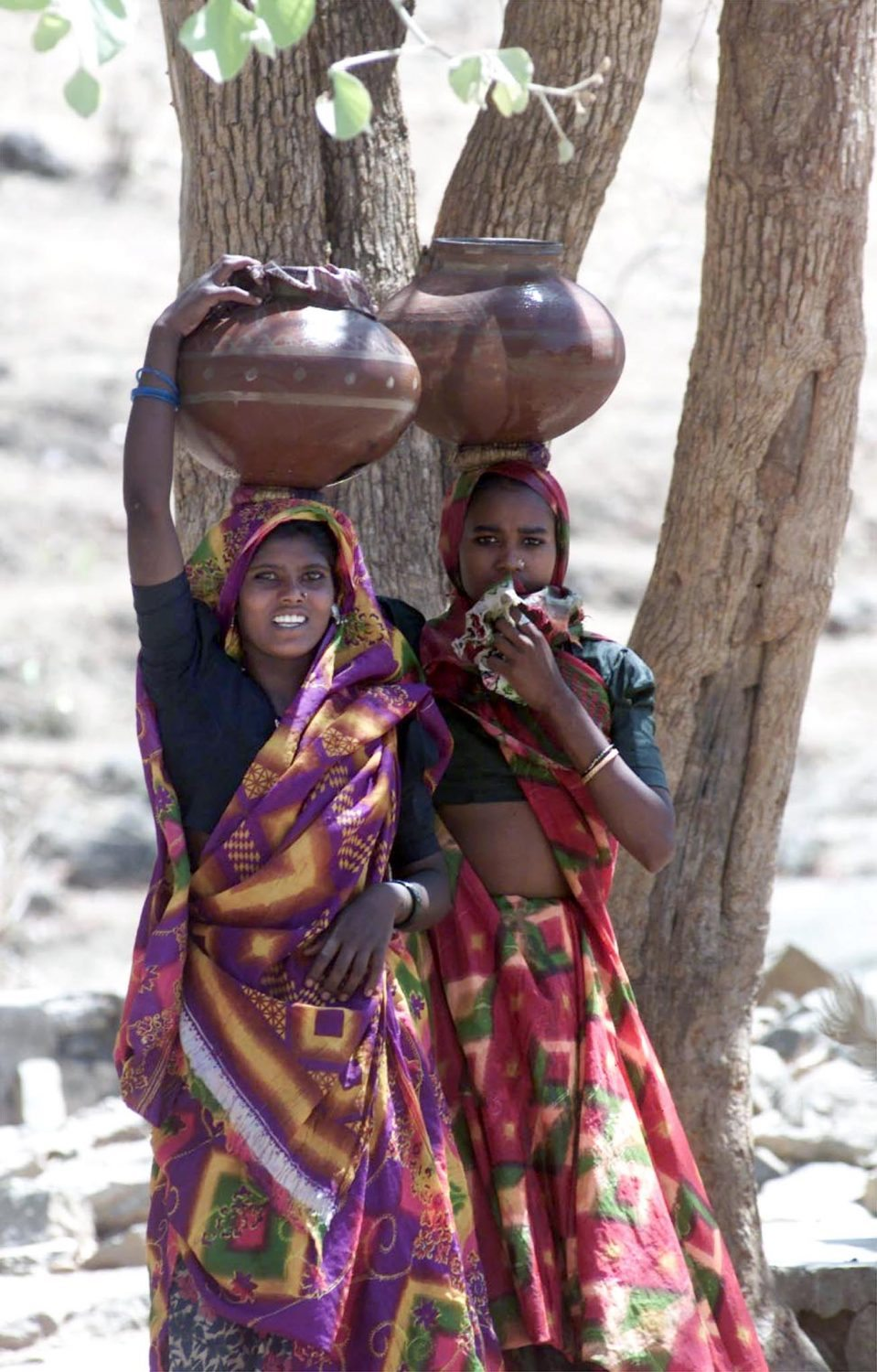 Women carry water drawn from a handpump at the village of Kalakhetar in India's western state of Rajasthan. Thousands of villages in Rajasthan are facing an acute shortage of water and animal feed with most sources of water having dried out in what is seen to be the worst drought in 100 years.
