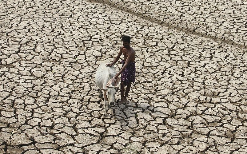A villager along with his cow walks through a parched land of a dried pond on a hot day on the outskirts of Bhubaneswar in the eastern Indian state of Odisha May 2, 2014. REUTERS/Stringer (INDIA - Tags: ENVIRONMENT ANIMALS) - RTR3NINA