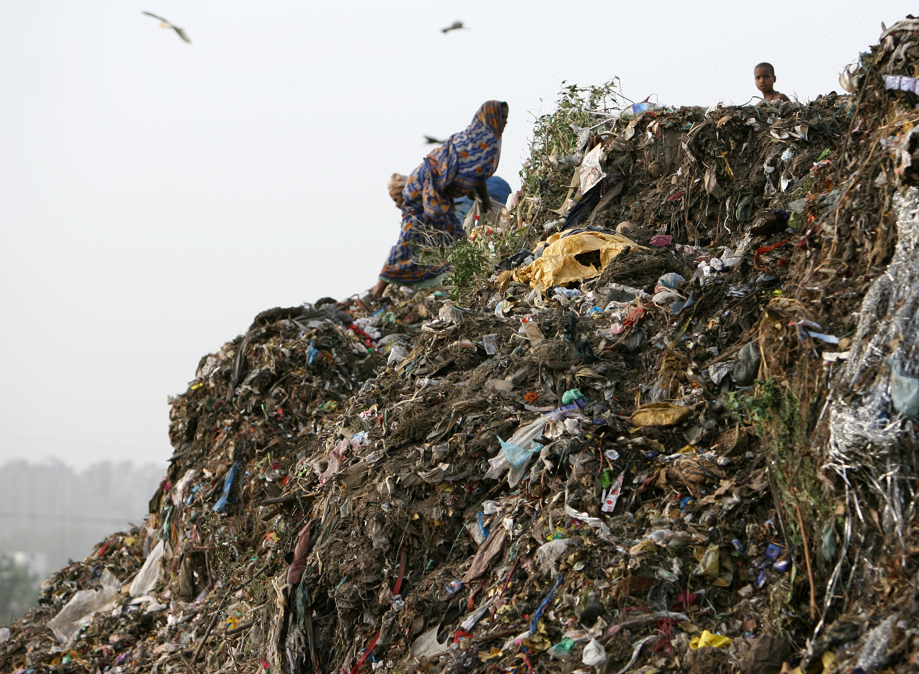 A woman collects recyclable materials on a mountain of garbage in New Delhi June 8, 2006. REUTERS/Desmond Boylan (INDIA) - RTR1E7N8
