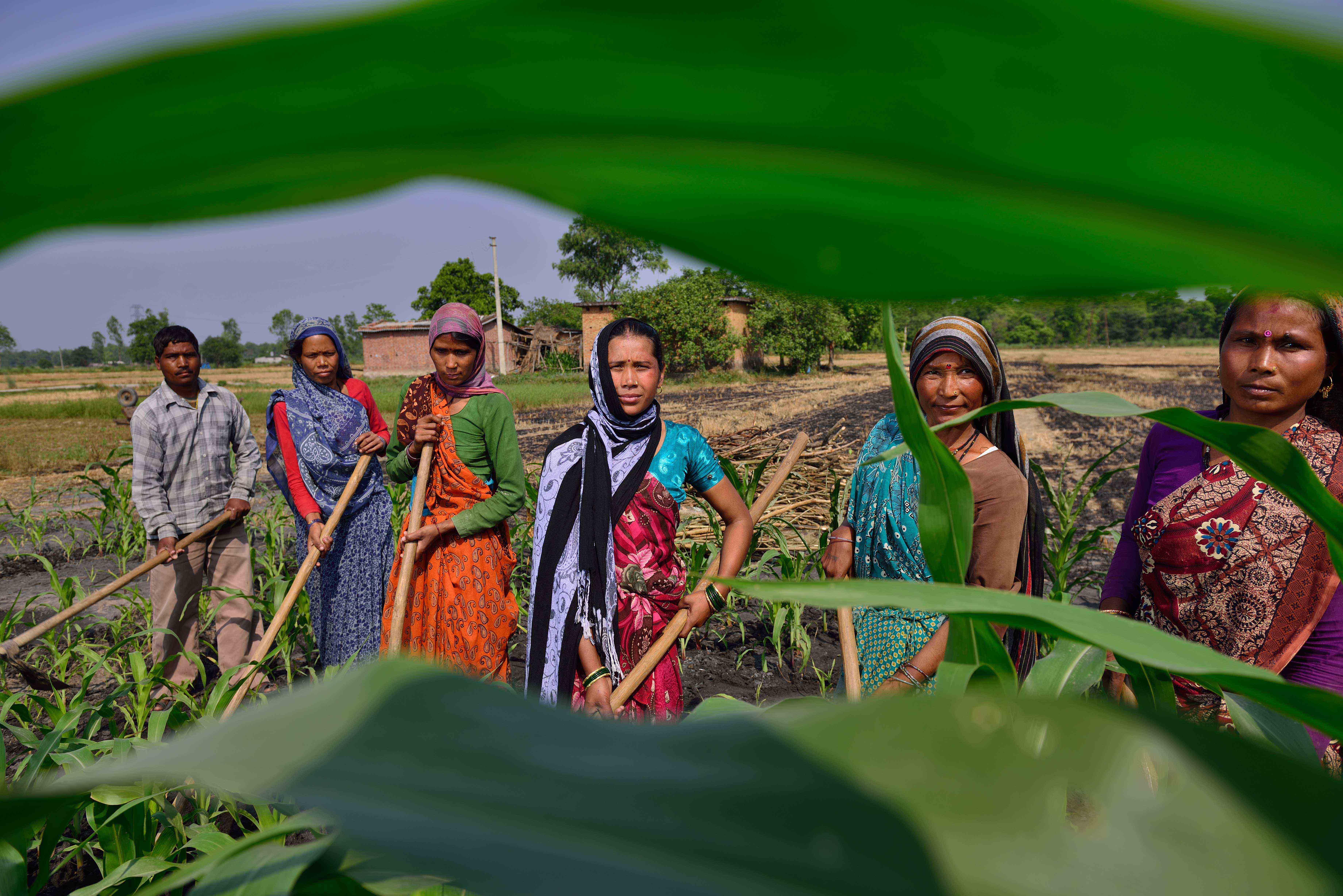 women farmer uttarakhand