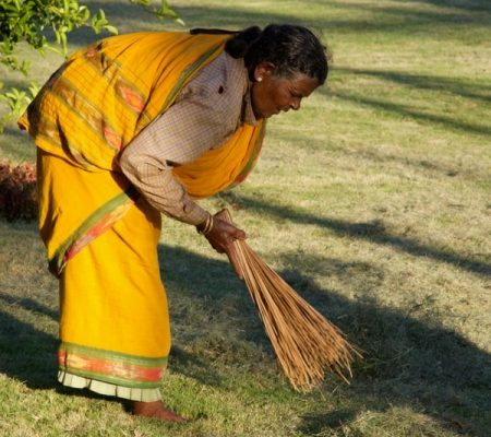 Woman raking up grass clippings