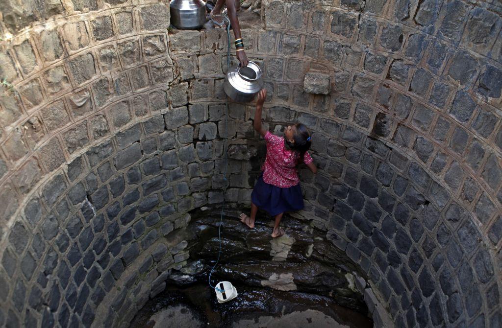 download Wassermilben aus der Schwechat