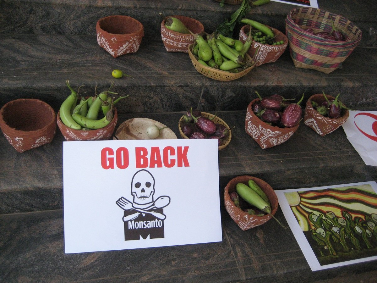 "A placard reading ""Go Back Monsanto"" next to baskets of vegetables"