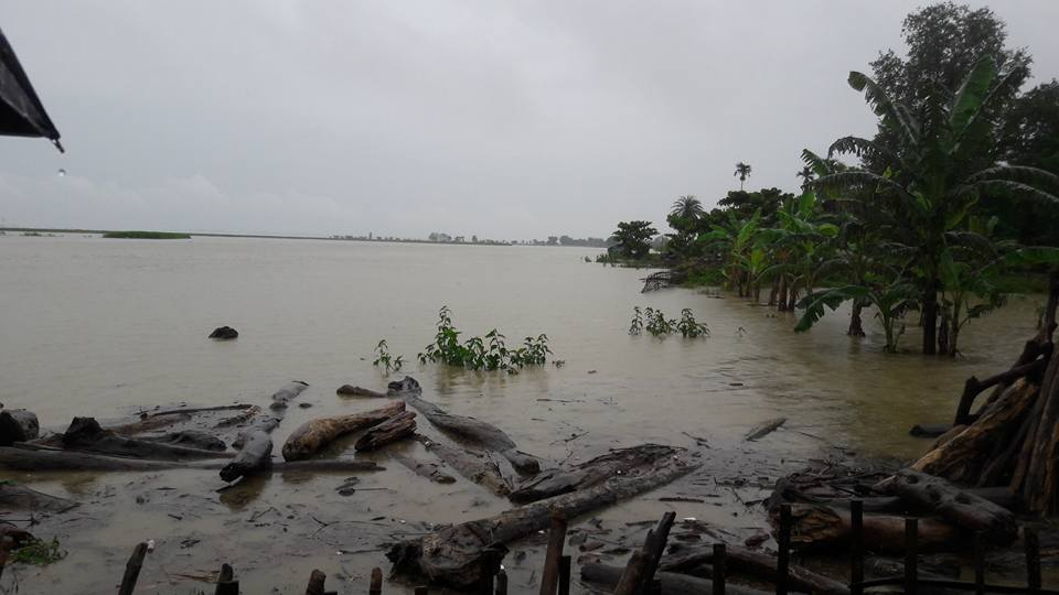 Assam ravaged by floods, 49 dead, several hundred displaced