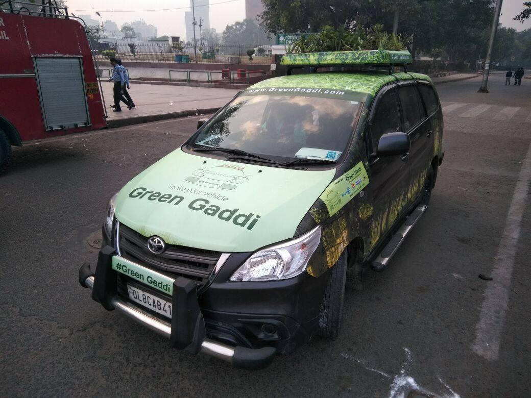 Green Gaddi