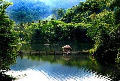 Kerala trip to Thattekad