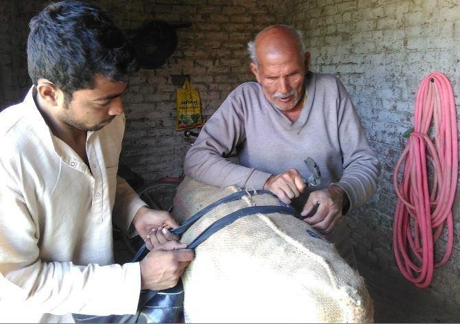 A Farmer Dad's Teacher Son