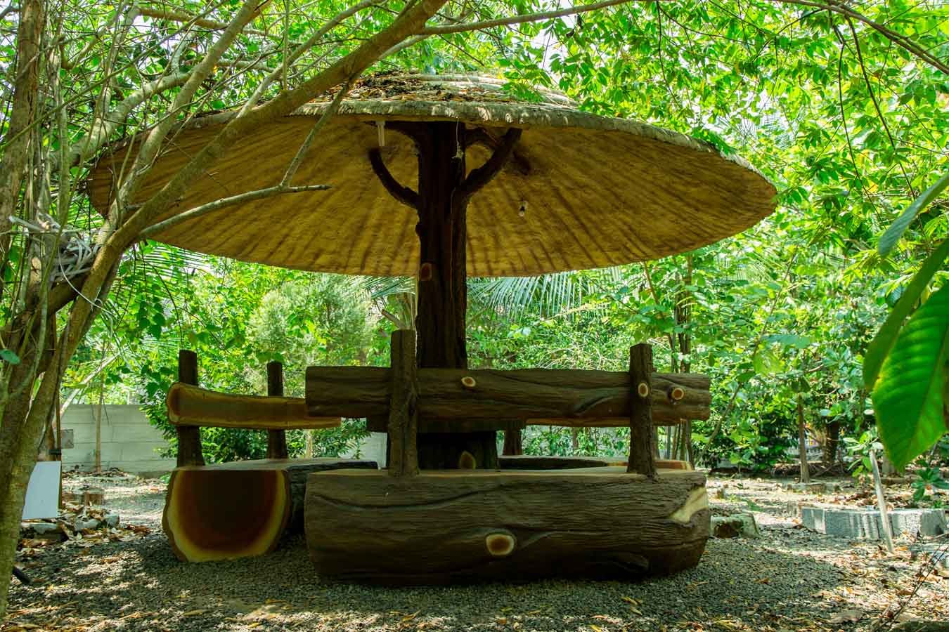 Kerala tour packages from Bangalore with price