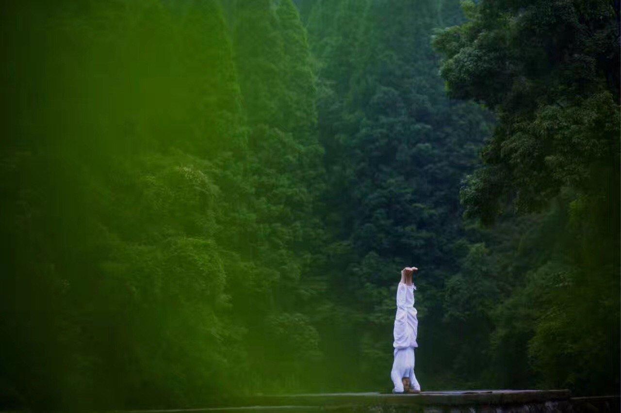 yoga school rishikesh