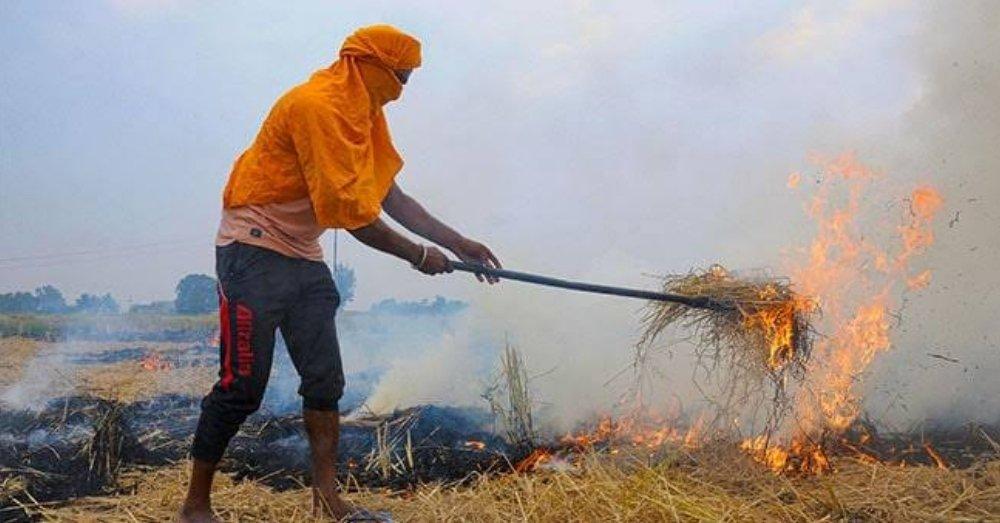 पराली जलाते किसान