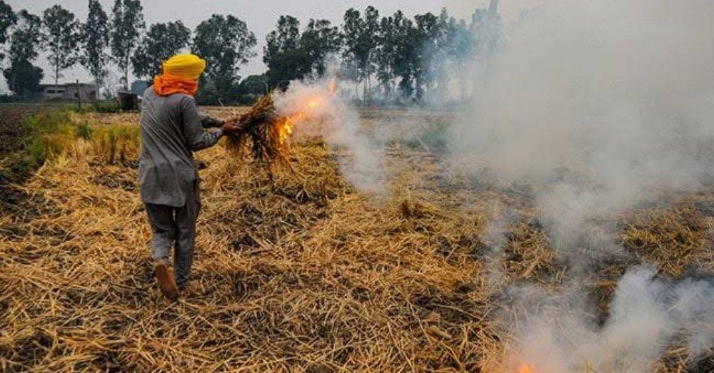 पराली जलाते किसान। फोटो साभार- Flickr