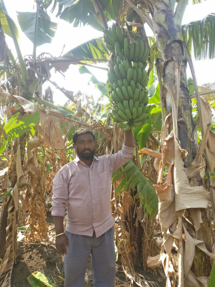 Balasaheb Yadav, a marginal farmer from Latur who is prospering in a state that has witnessed 15000 farmer suicides in the last six years