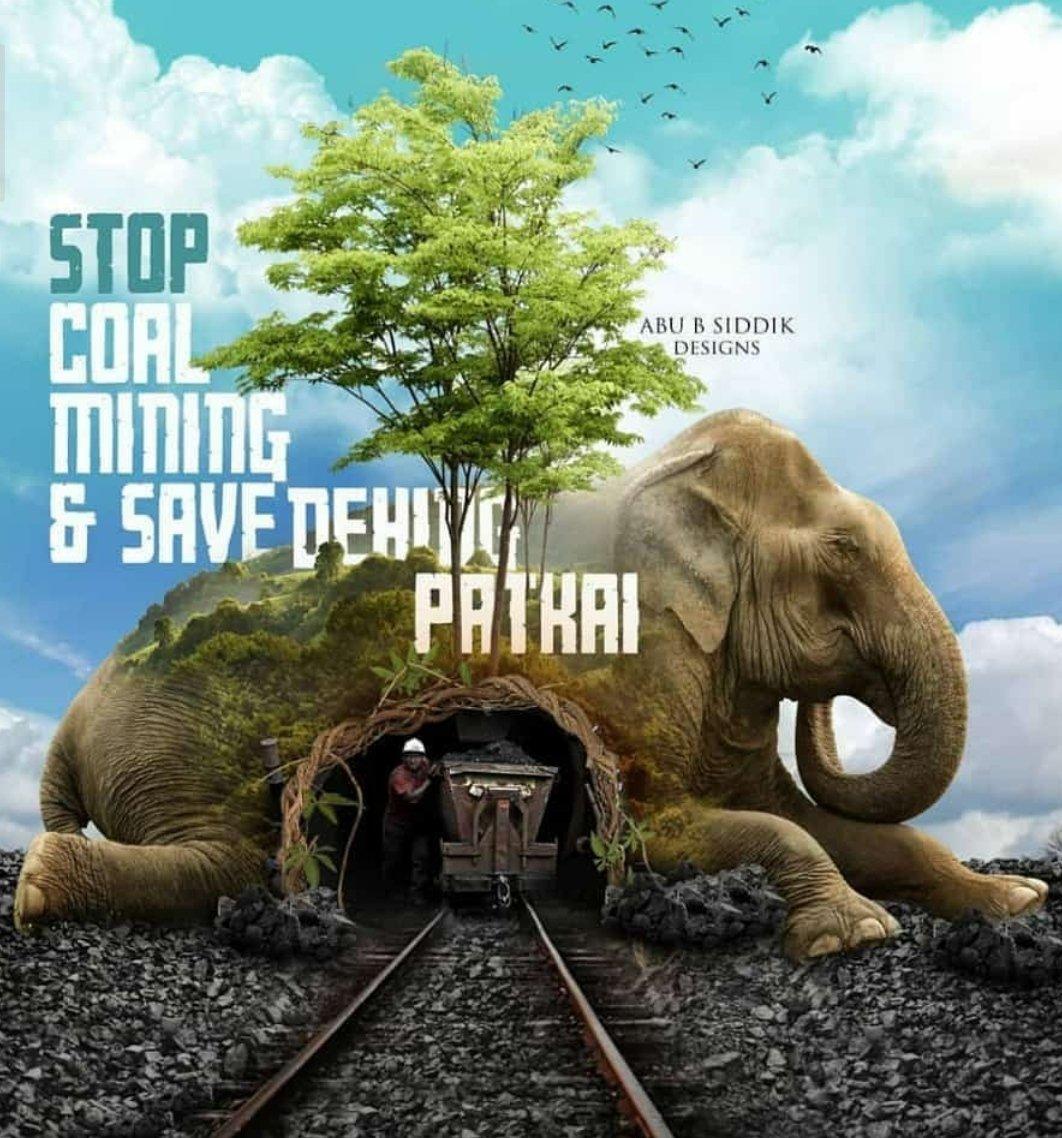 Poster to save dehing Patkai