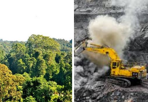 green forest being cut for coal mining