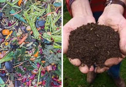 compost box with food waste, manure and fertilisers