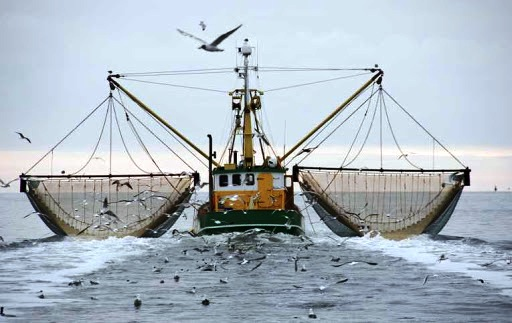 Double trawler filled with catches and by-catches.