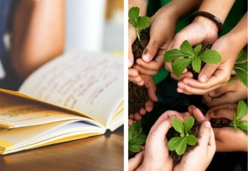 green curriculum in schools, colleges, green tech careers