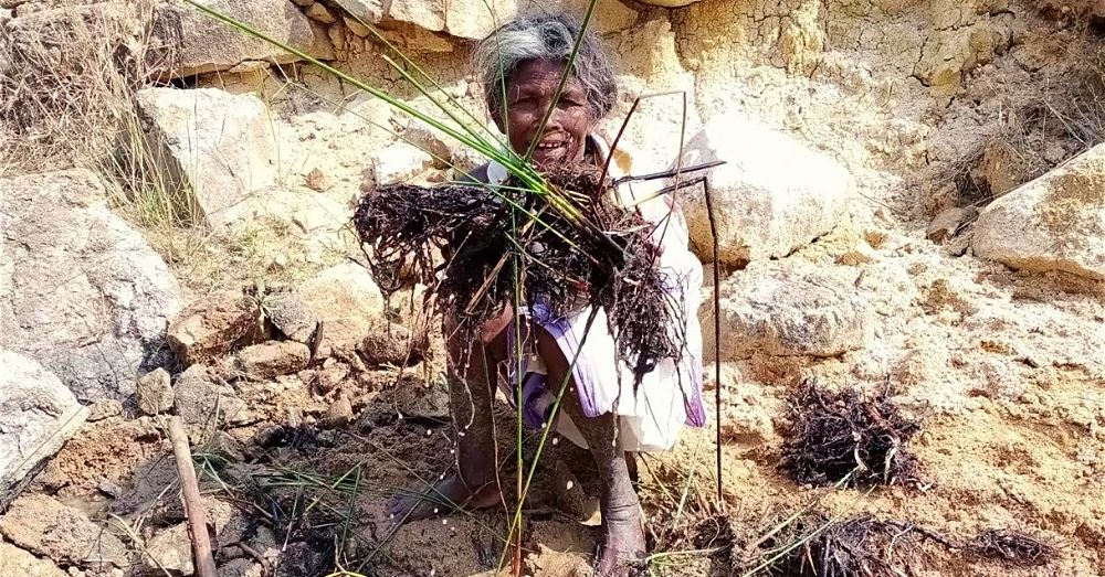 adivasi lives matter