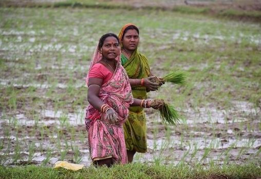 two women farmers on agriculture fields