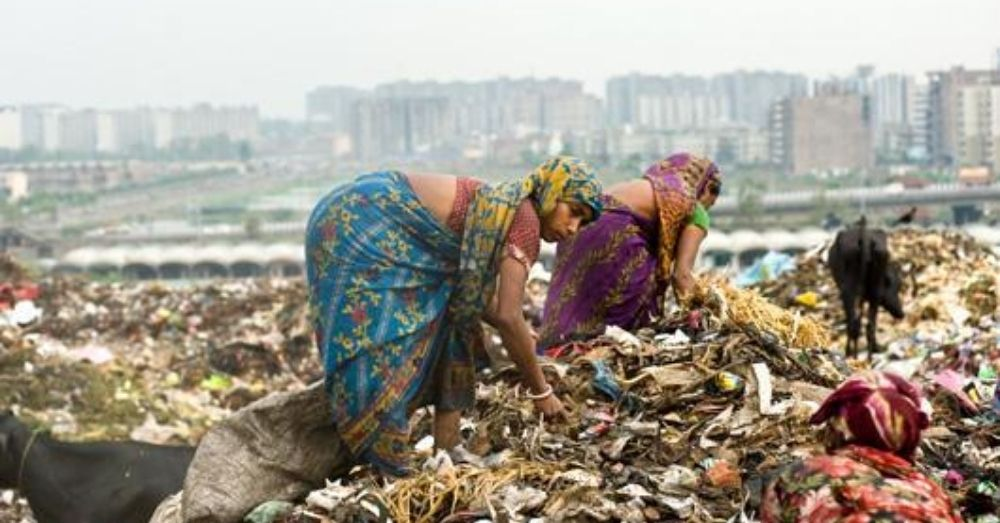 waste picker ragpicker lady at a landfill