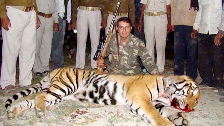 Tigress Avni Shot Dead