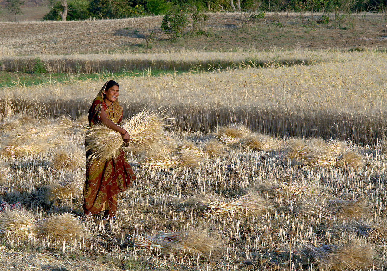 Woman on farm