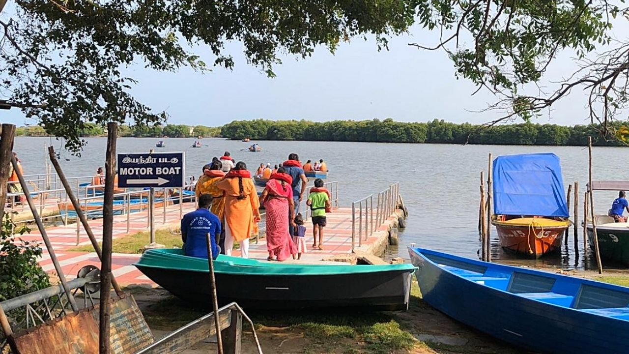 Tourist Pichavarma